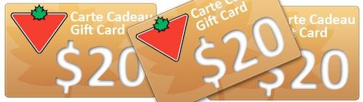 concours une carte cadeau de 20 chez canadian tire site de concours 5 janvier 2015. Black Bedroom Furniture Sets. Home Design Ideas