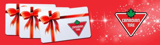 http://www.toutacoup.ca/concours-gratuit/cartes-cadeaux/centres-d-achats/carte-cadeau-150-Canadian-Tire/novembre-2015/74022/?trk=TAC130
